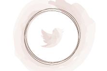 onglet_twitter